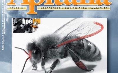 Tecnica beePM® e delle sue possibili applicazioni